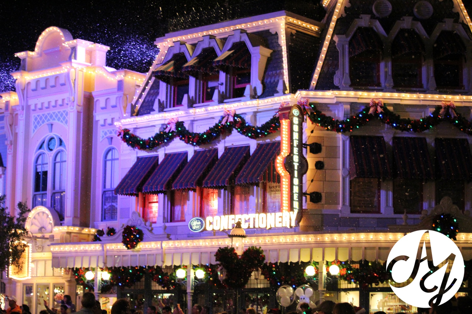 2014 Review of Mickey's Very Merry Christmas Party at Magic Kingdom