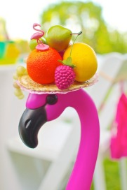 Fruity-Flamingo-161