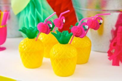 Fruity-Flamingo-81